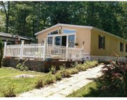 204 West Mohican Trail, Glen Spey image