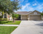 7221 Bucks Ford Drive, Riverview image