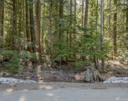 1351 Via Kachess Rd, Easton image
