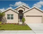 30920 Water Lily Drive, Brooksville image