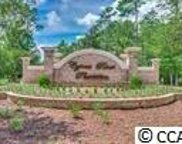 4001 Blackwood Court, Myrtle Beach image