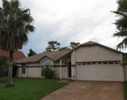 118 Briarcliff Drive, Kissimmee image