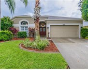 14418 Pepperpine Drive, Tampa image