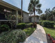 52 Cypress View Dr Unit D-52, Naples image