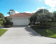 2007 NW Royal Fern Court, Palm City image