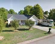 1101 Ravenswood Drive, Anderson image