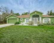 13485 Canyon Swallow Rd, Brooksville image