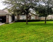 12806 DUNNS VIEW DR, Jacksonville image