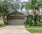 11520 Ashton Field Avenue, Riverview image