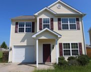 4117 Lady Slipper Lane, Durham image