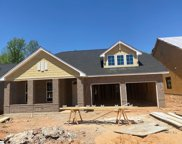 630 Betony Way Unit Lot 28, Greenville image