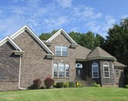 825 Burlington Ct, Clarksville image