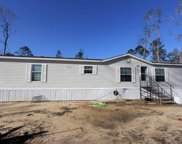 141 Bodie Lister Dr, Wewahitchka image