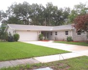2503 Greenmoor Place, Tampa image