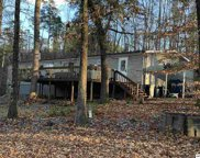 405 Blackberry Ln, Dandridge image