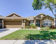 19120 Golden Cacoon Place, Lutz image