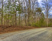 Lot #1 Rhododendron  Drive, Saluda image