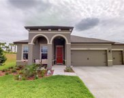 11933 Tetrafin Drive, Riverview image