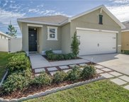 12122 Suburban Sunrise Street, Riverview image