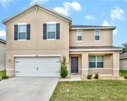 3843 Crystal Dew Street, Plant City image