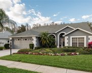9603 Conservation Drive, New Port Richey image
