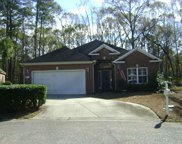 82 Pintail Court, Pawleys Island image
