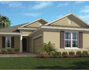 14542 Black Quill Drive, Winter Garden image