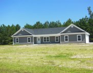 194 Cat Tail Bay Drive, Conway image