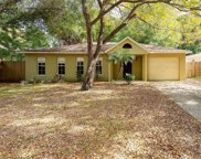 6824 S Trask Street, Tampa image