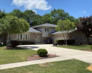 13950 Green Valley Drive, Orland Park image