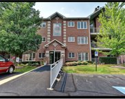 11545 Settlers Pond Way Unit 1A, Orland Park image