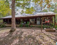 1399 Camp Winnataska Rd, Pell City image