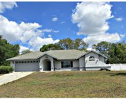 12469 Winston Court, Spring Hill image