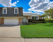 85 Newtown Drive, Buffalo Grove image