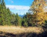 999 W Fork Trail Creek  Road, Trail image