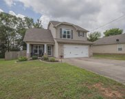 105 Amos Springs Way, Smyrna image