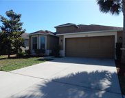 7025 Forest Mere Drive, Riverview image