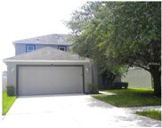 10318 Frog Pond Drive, Riverview image