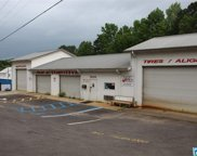 3315 Cogswell Ave, Pell City image