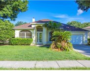 1402 Valley Pine Circle, Apopka image