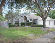 4527 River Overlook Drive, Valrico image