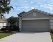12423 Cedarfield Drive, Riverview image