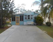 10851 Little Heron CIR, Estero image