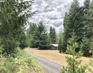 32544 DANVILLE  RD, Creswell image