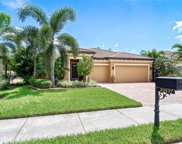 20437 Black Tree Ln, Estero image