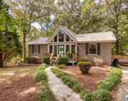 155 Lake Country Dr, Odenville image