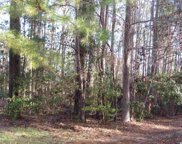 LOT 273 CLANCURRY PL, Pawleys Island image