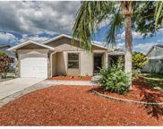 707 Merlins Court, Tarpon Springs image