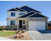 7163 White River Ct, Timnath image