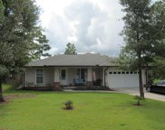 483 Hunters Ridge Road, Defuniak Springs image